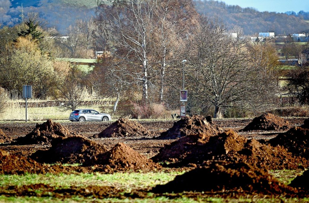 Zwischen den Erdhaufen verlaufen die flachen Reihen, welche die Archäologen für die erste Erkundung gezogen haben. Foto: factum/Granville