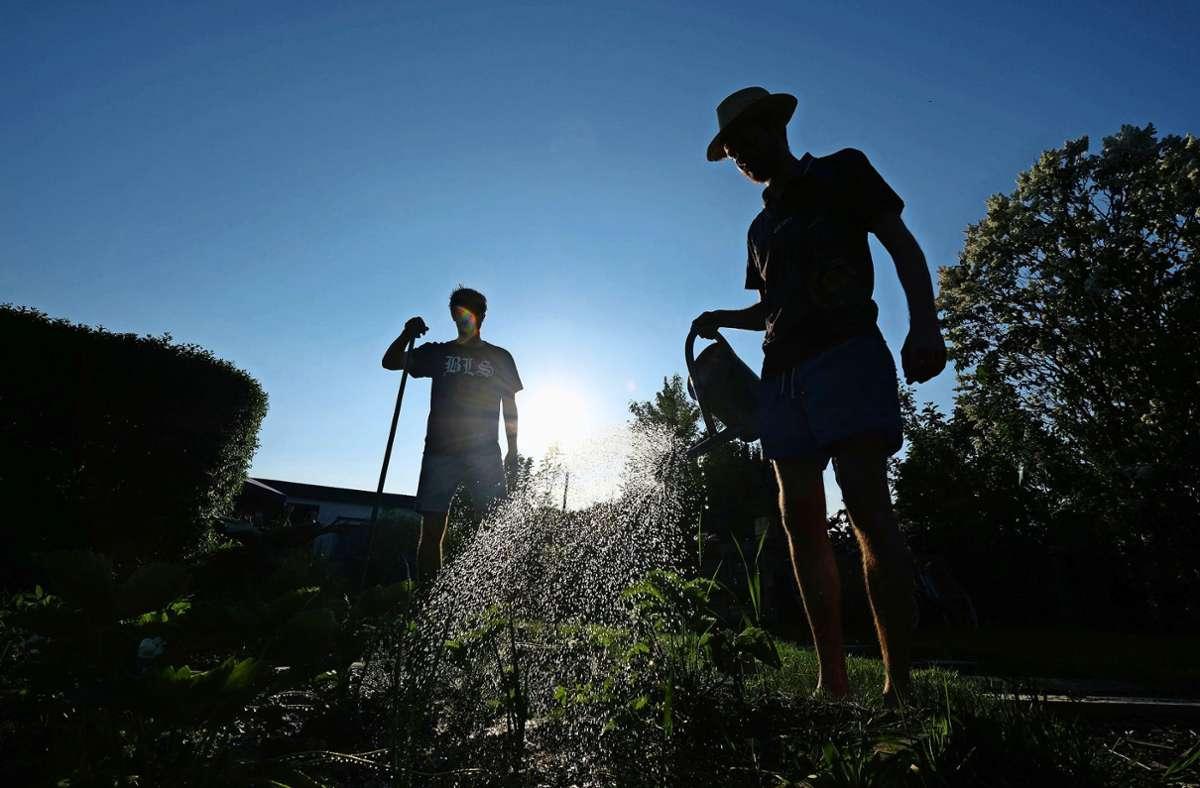 Das Wasser aus der Zisterne kann natürlich auch zum Gießen des Gartens verwendet werden. Foto: dpa/Sebastian Willnow