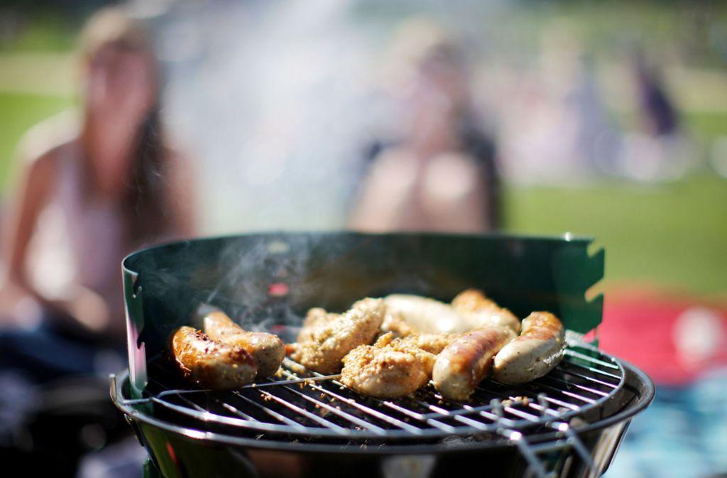 Grillen ist im Wald nur an vorhandenen Grillstellen erlaubt. Foto: dpa (Symbolbild)