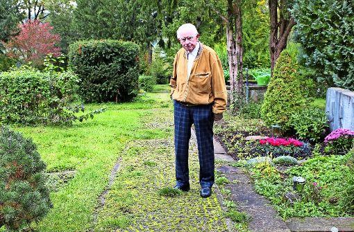 Moos und Gras lassen den Friedhof verlottern