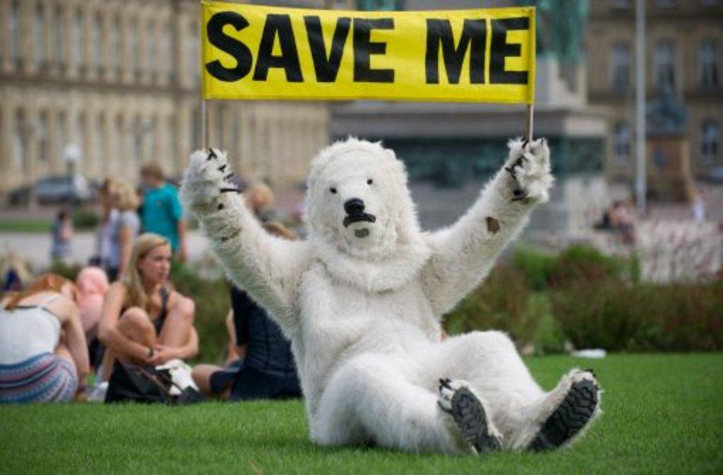 Ein als Eisbär verkleideter Greenpeace-Aktivist hat am Dienstag in Stuttgart für den Schutz der Arktis demonstriert. Foto: dpa
