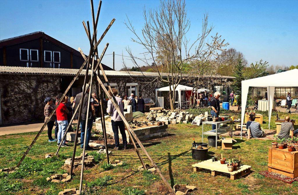 Seit drei Jahren betreibt der Verein Chloroplast  auf dem Walz-Areal in Weilimdorf eine Spielwiese für Fans des urbanen Gärtnerns. Foto: privat