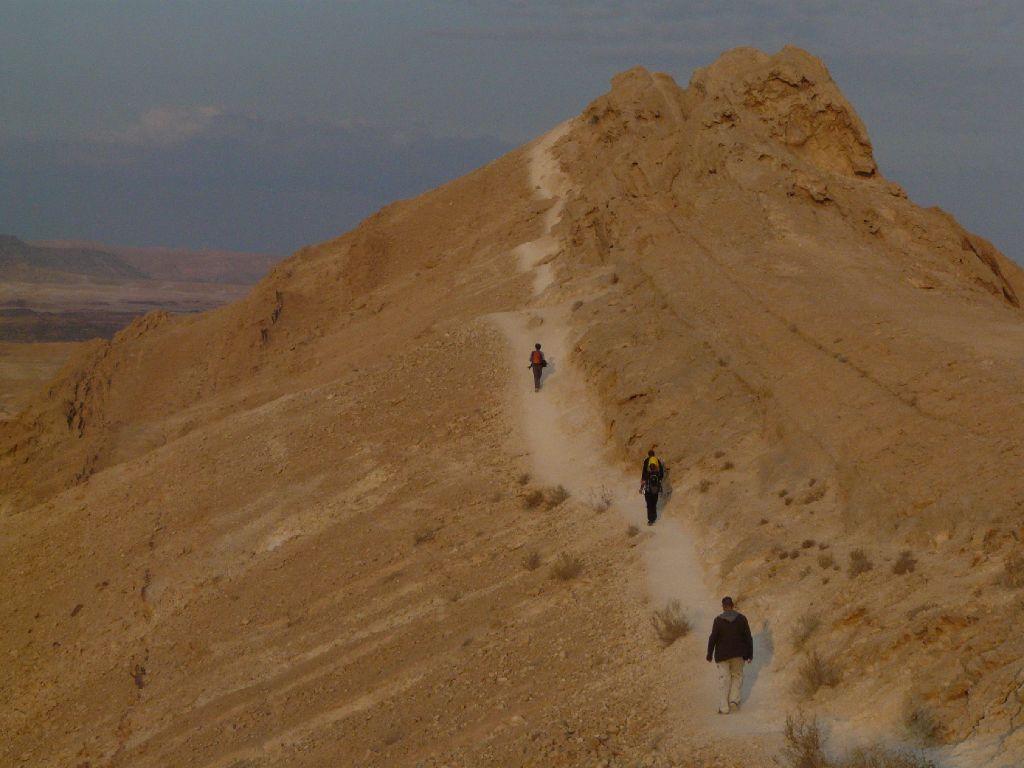 Einblicke in die Negevwüste in Israel. Foto: Tschepe