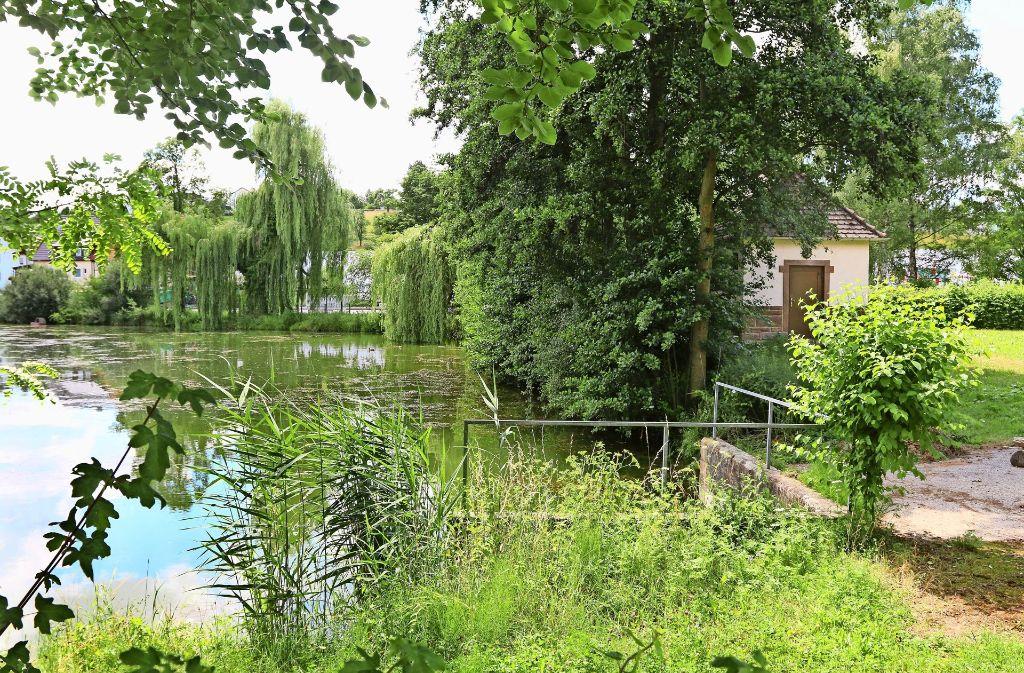 Vor der idyllischen Kulisse des Heimsheimer Sees soll das neue Gebäude für die Aufbereitungsanlage stehen Foto: Andreas Gorr