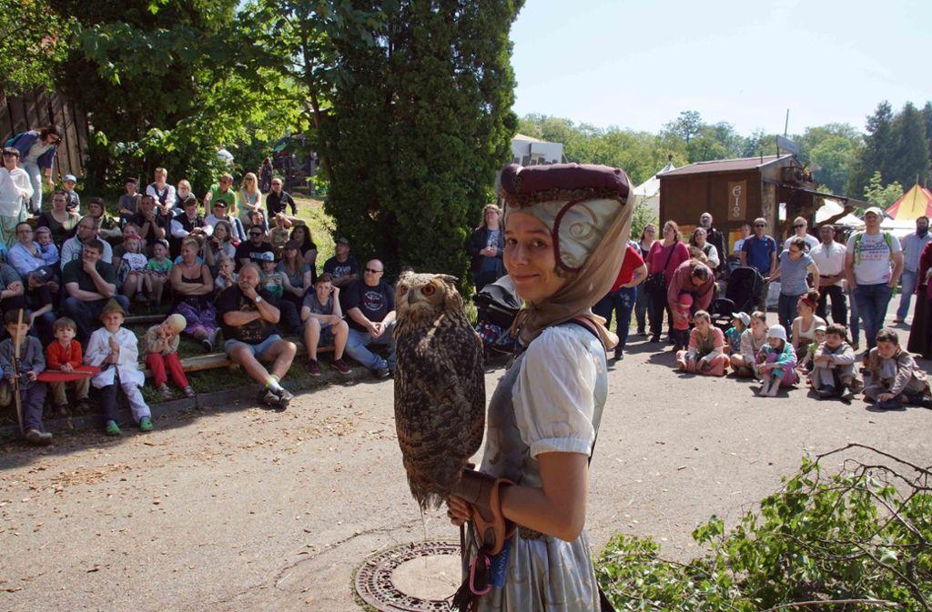 Neben Ritterkämpfen und einem Bogenturnier gibt es auch eine beeindruckende Greifvogel-Show. Foto: Fotoagentur-Stuttg