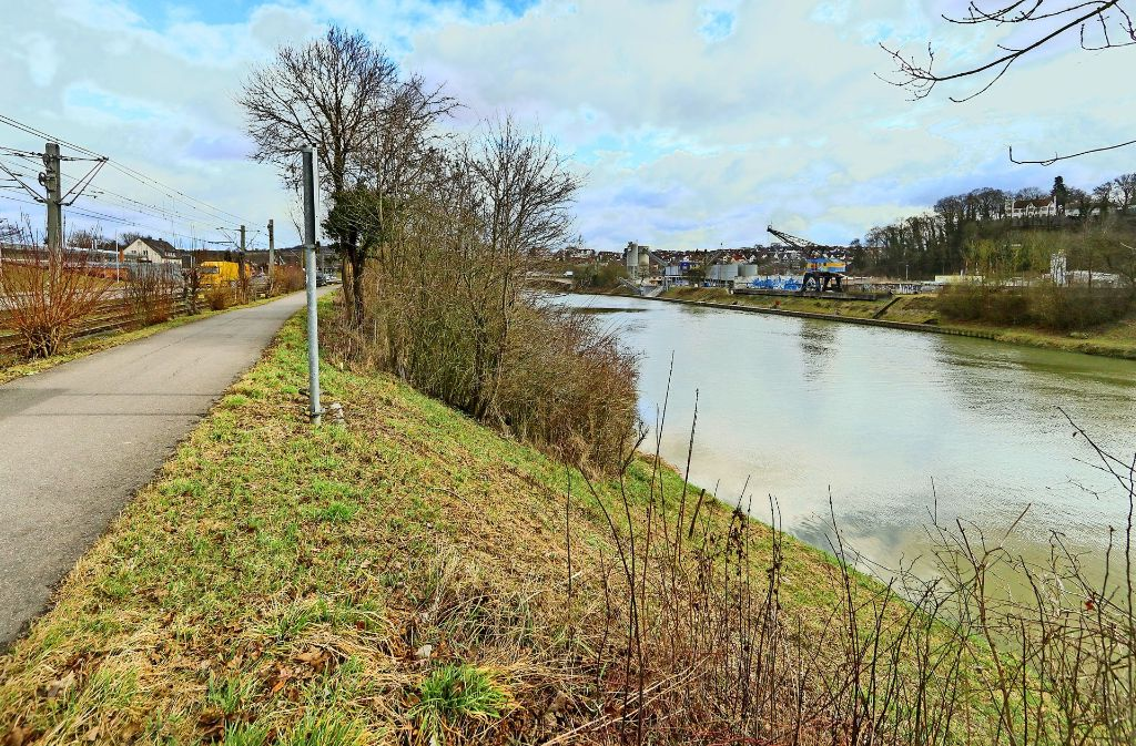 Einige Hundert Meter flussaufwärts der bisherigen Neckarbrücke soll in den kommenden Jahren die Westrandbrücke gebaut werden. Foto: factum/Archiv