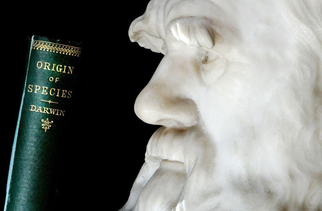 """Eine Erstausgabe von Charles Darwins Buch """"The Origin of Species"""" von 1859 im Londoner Natural  History Museum. Das Opus Magnum des Vaters der Evolutionslehre ist einer der bedeutendsten Meilensteine in der Wissenschaftsgeschichte. Foto: AFP"""