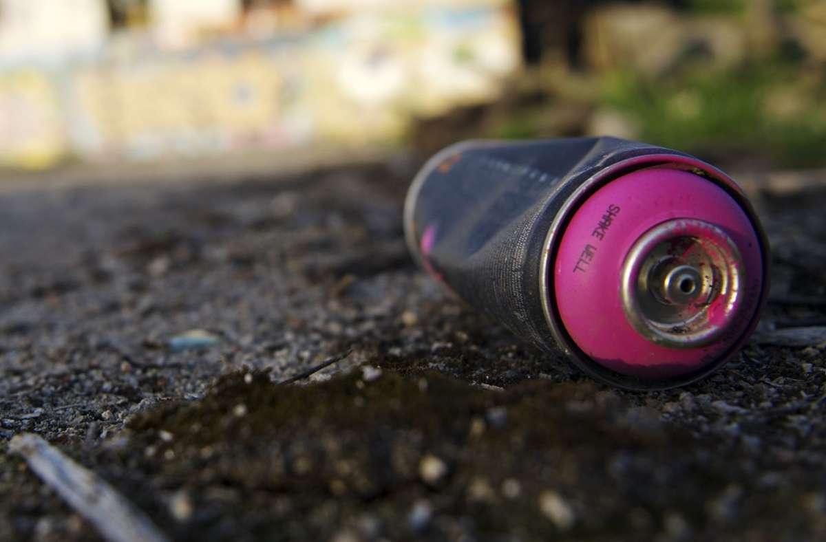 Der Sprayer hat auch die Mauer des Hoppenlaufriedhofs nicht verschont. Foto: dpa/Emily Wabitsch (Symbolbild)
