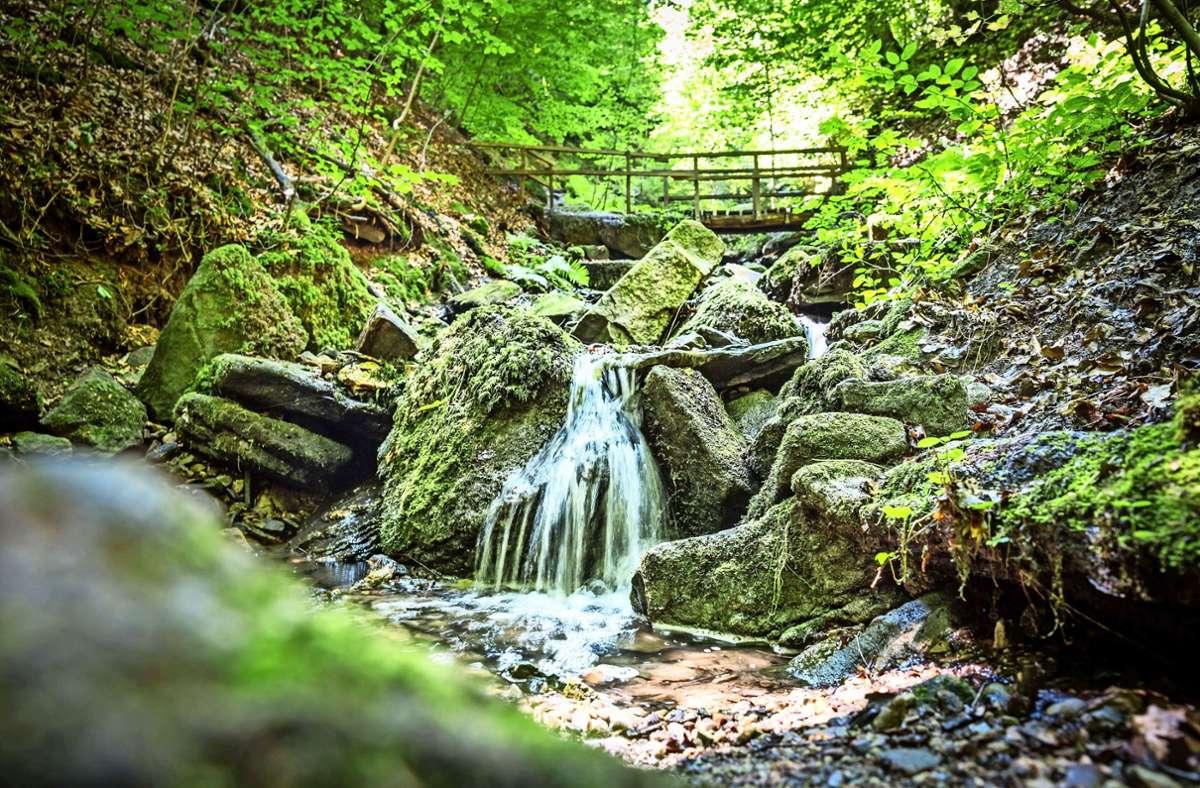 Die alte Brücke über die Heslacher Wasserfälle ist saniert worden. Mitte Oktober wird der Weg freigegeben. Foto: Lichtgut/Julian Rettig