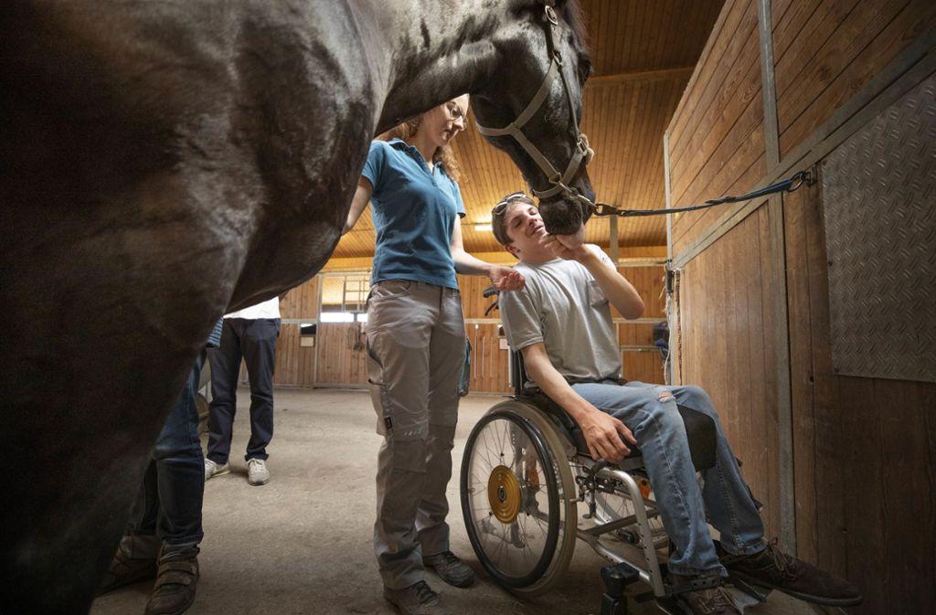 Nathalie Dieterich schafft Vertrauen zwischen Mensch und Pferd. Foto: