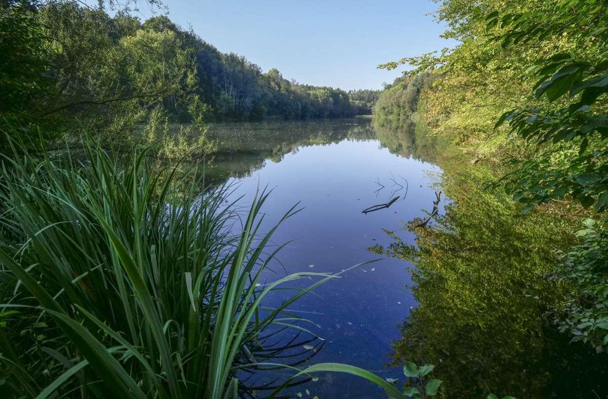 Ein Ort der Ruhe für Angler, Naturfreunde und Spaziergänger ist der Sulzbachstausee geworden. Foto: factum/Simon Granville