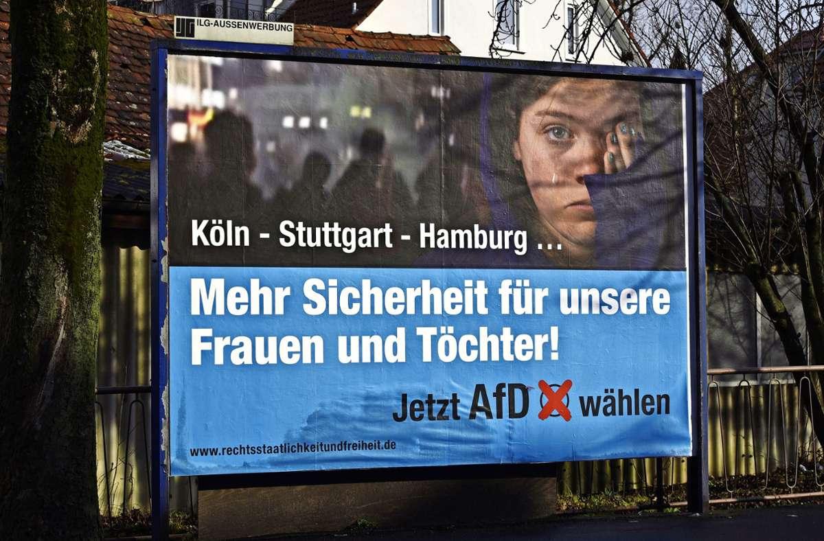 Mit solchen Plakaten warben Unterstützer im Landtagswahlkampf 2016 für die AfD, hier in Göppingen. Foto: picture alliance / dpa/Daniel Maurer