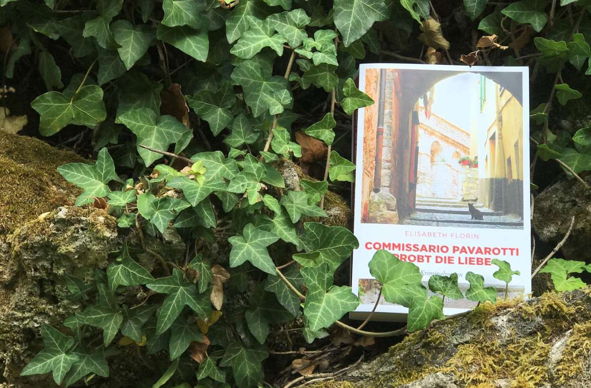 """Der neue """"Pavarotti"""" eignet sich bestens für die Ferienlektüre. Foto: Lukas Jenkner"""