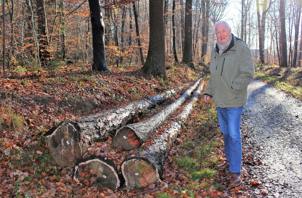 Heinz Kisgen ärgert sich über das vergammelte Holz im Silberwald. Dieses ist zum Großteil sogar bereits verkauft. Foto: Caroline Holowiecki