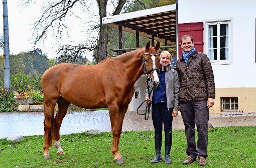 Wo ein Pferd noch Pferd sein darf