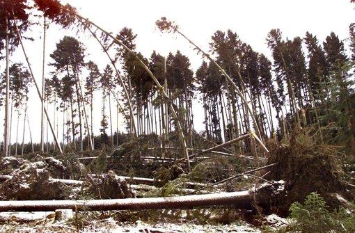 Zahlreiche entwurzelte Bäume liegen am 27. Dezember 1999 in einem Waldstück bei Villingen-Schwenningen (Schwarzwald-Baar-Kreis). Am zweiten Weihnachtsfeiertag fegte das Orkantief Lothar über Mitteleuropa hinweg und richtete schwere Verwüstungen an. Foto: dpa