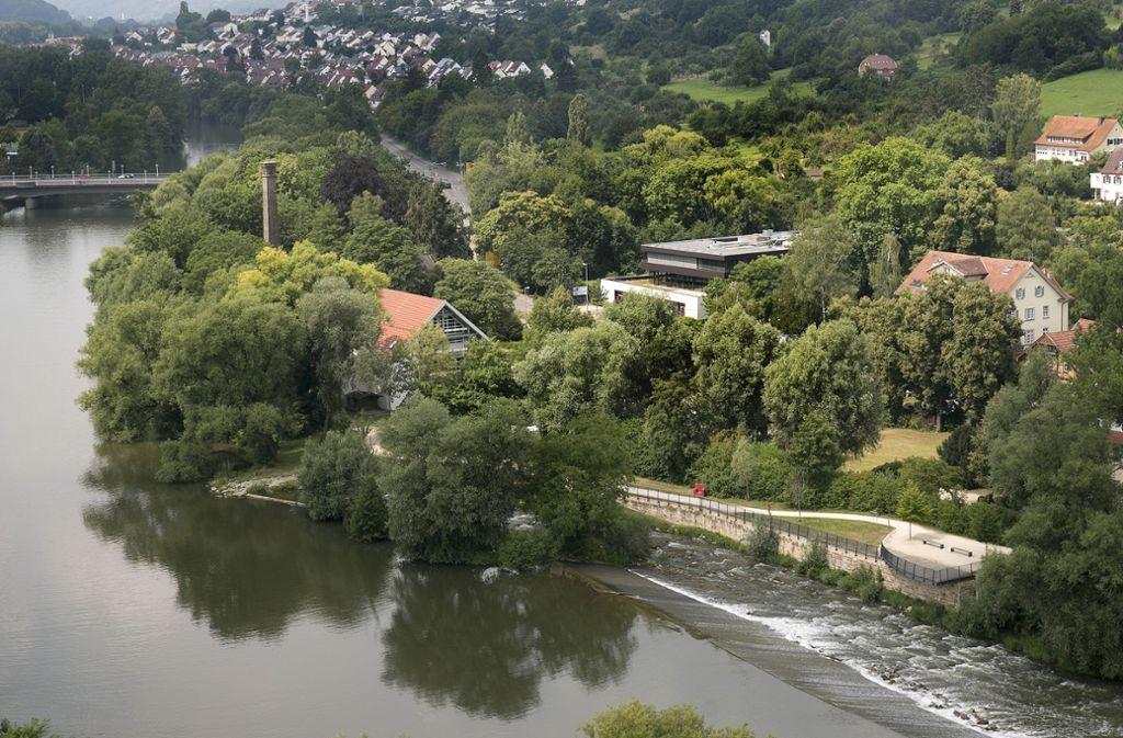 Das Gelände an der Fischtreppe soll bebaut werden. Gegen die Pläne gibt es Widerstand. Foto: Horst Rudel