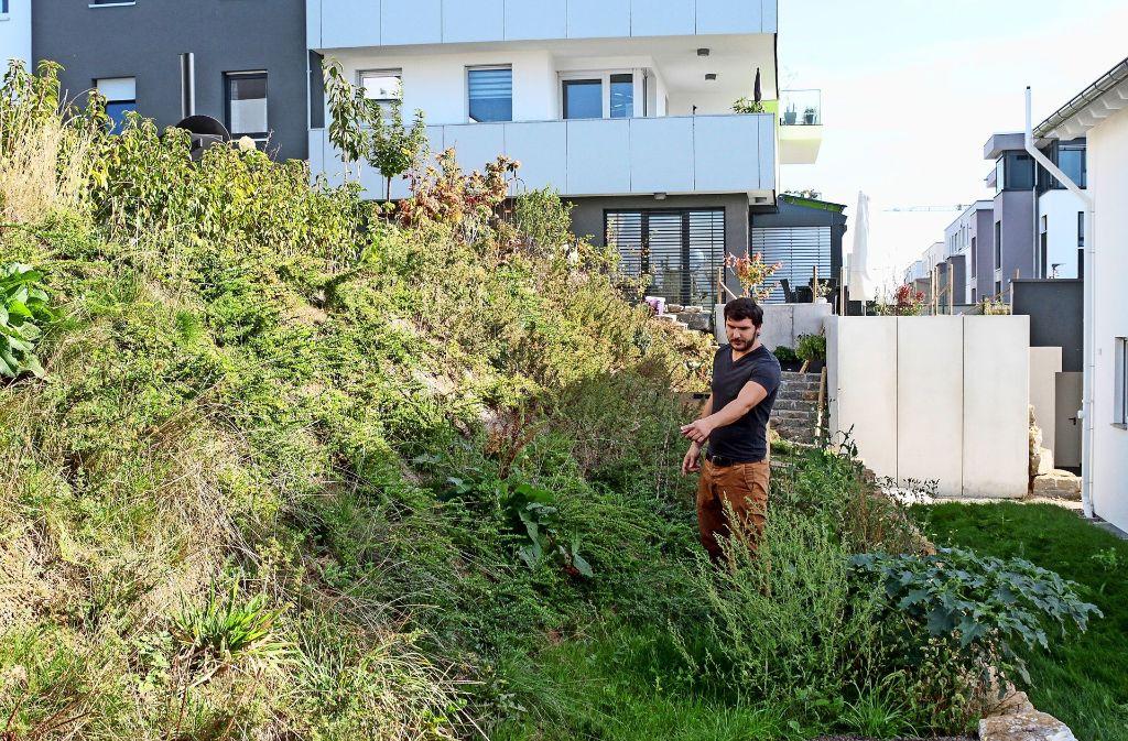 Hausbesitzer am Hang: Dominik Raba steht in seinem Garten, d Foto: factum/Bach