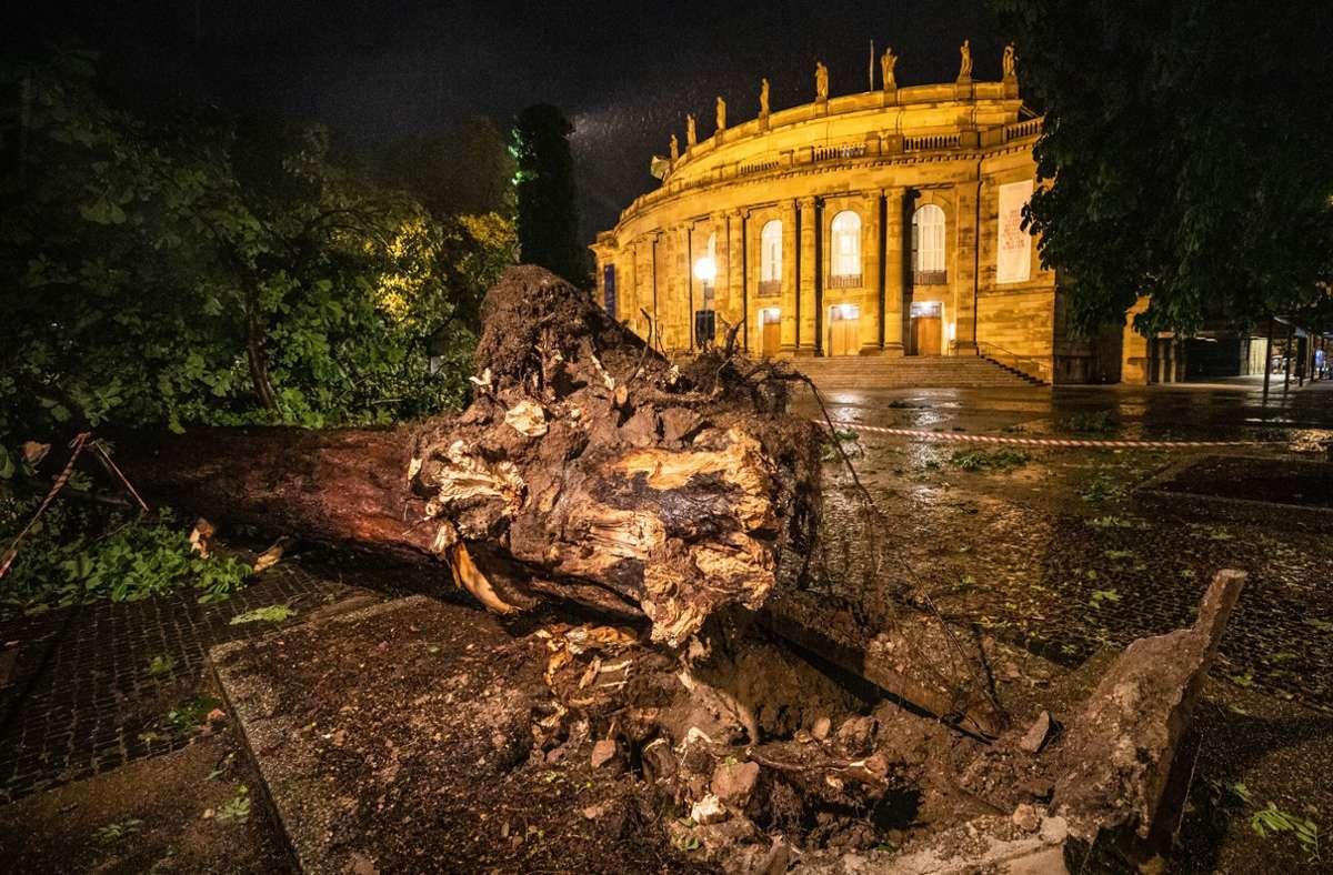 Das Stuttgarter Opernhaus nach dem Sturm am Montagabend Foto: Christoph Schmidt/dpa
