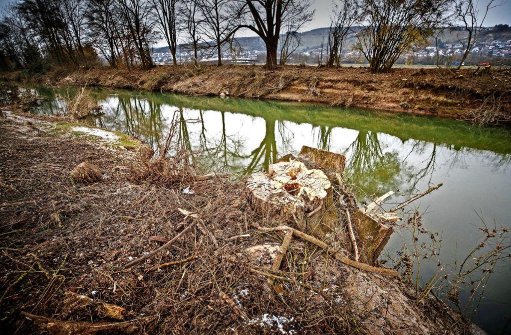 Noch wirkt  die Rems bei Winterbach wie ein Kanal, aber bald darf  sie  sich auf fast 100 Metern Breite ausdehnen. Foto: Gottfried Stoppel