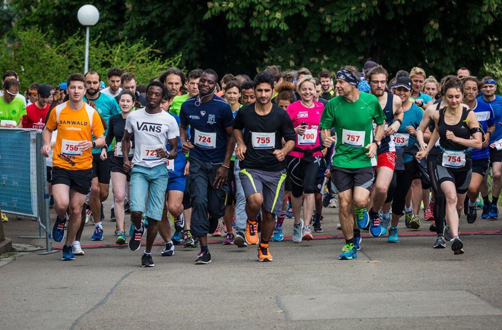 Laufen für den guten Zweck – bei dem Charity Walk and Run nahmen rund 280 Läufer teil. Foto: Lichtgut/Christoph Schmidt