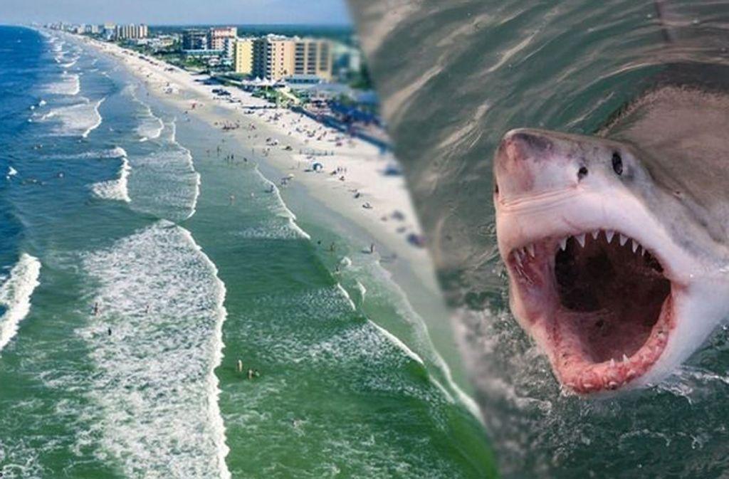 Dieser Strand in Florida wird häufig von Haien heimgesucht. Foto: Glomex/Sat1