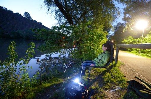Ein digitaler Spaziergang am Neckar