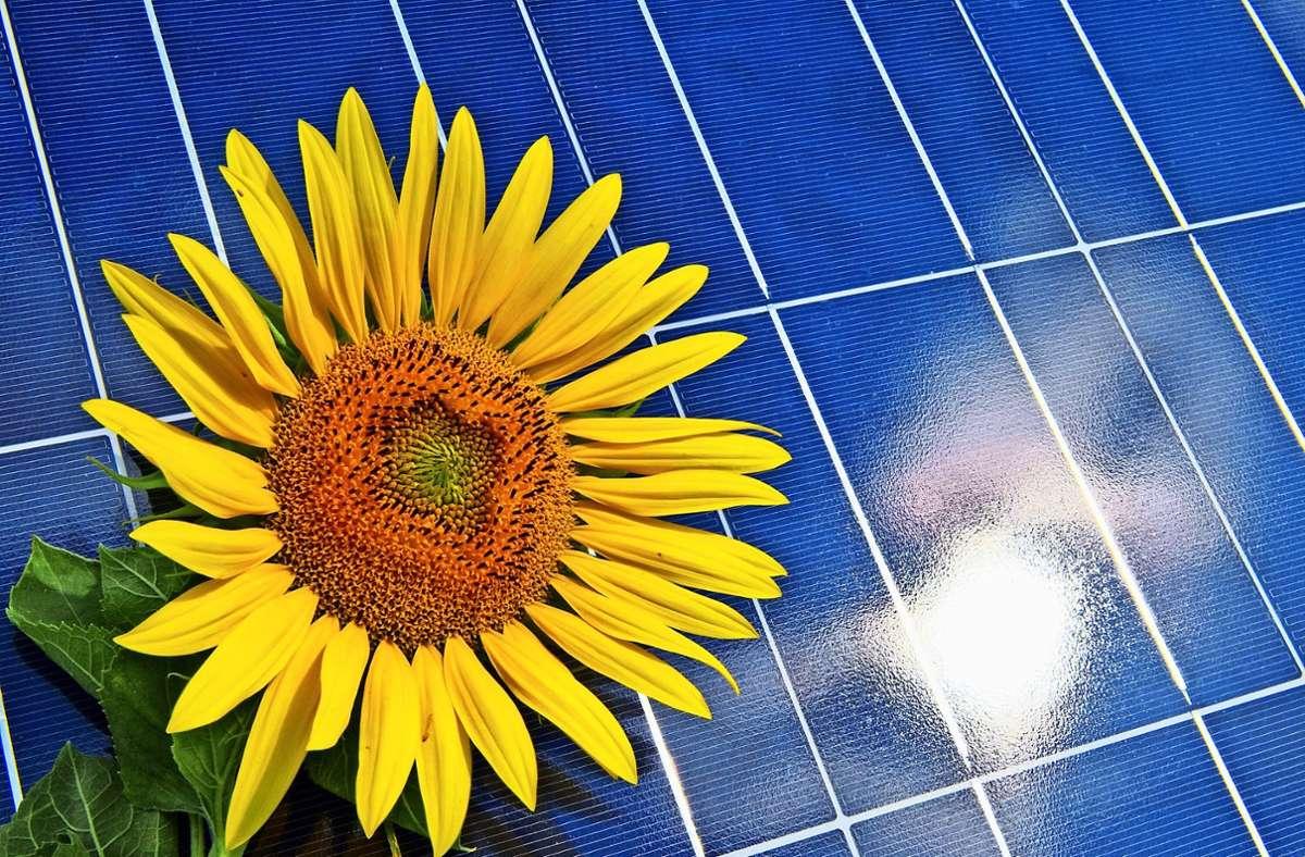 Wie komme ich zur passenden Solaranlage? Ein Start-up will dabei helfen. Foto: dpa/Pleul