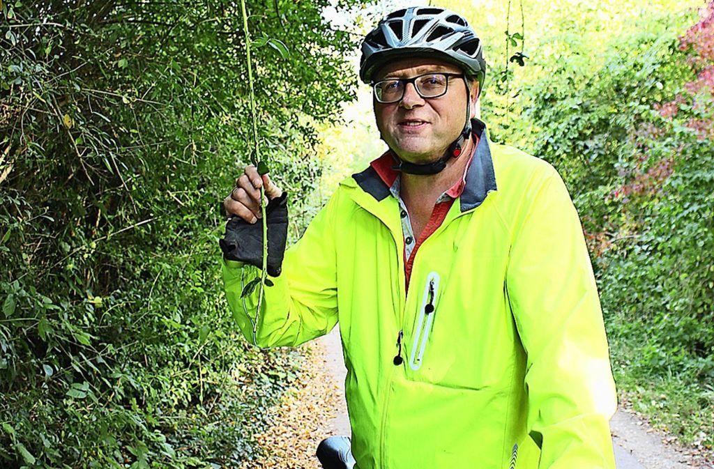 Ulrich Riegger ärgert sich über  Brommbeerranken, die von  Bäumen hängen. Foto: car