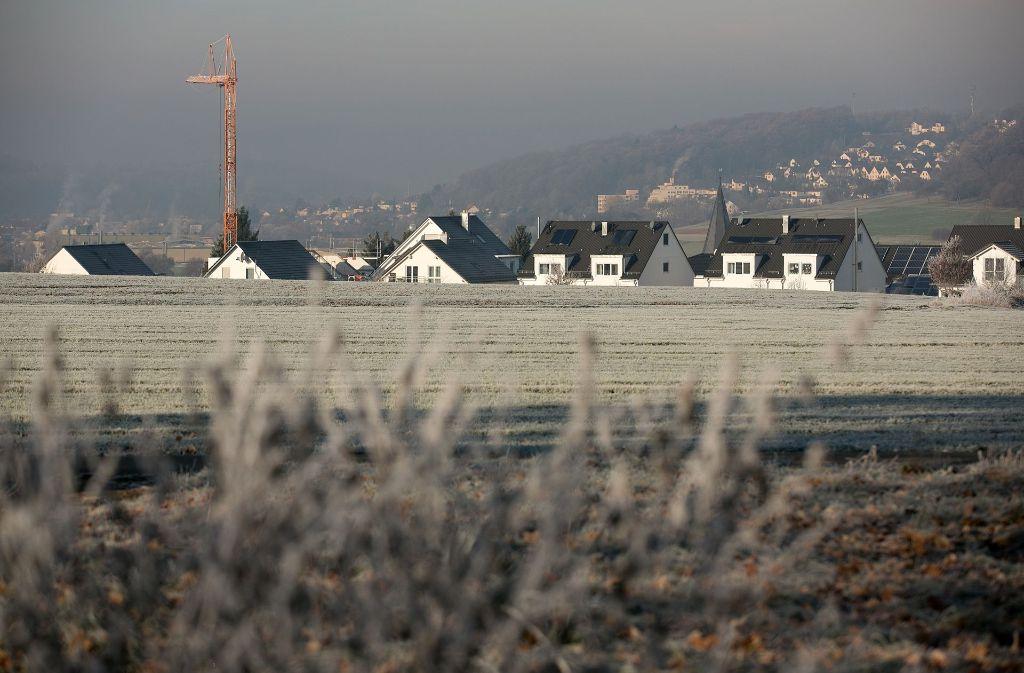 Auch die  Flächen beim  Neubaugebiet Berg (unser Bild) sollen untersucht werden. Foto: Rudel/Archiv