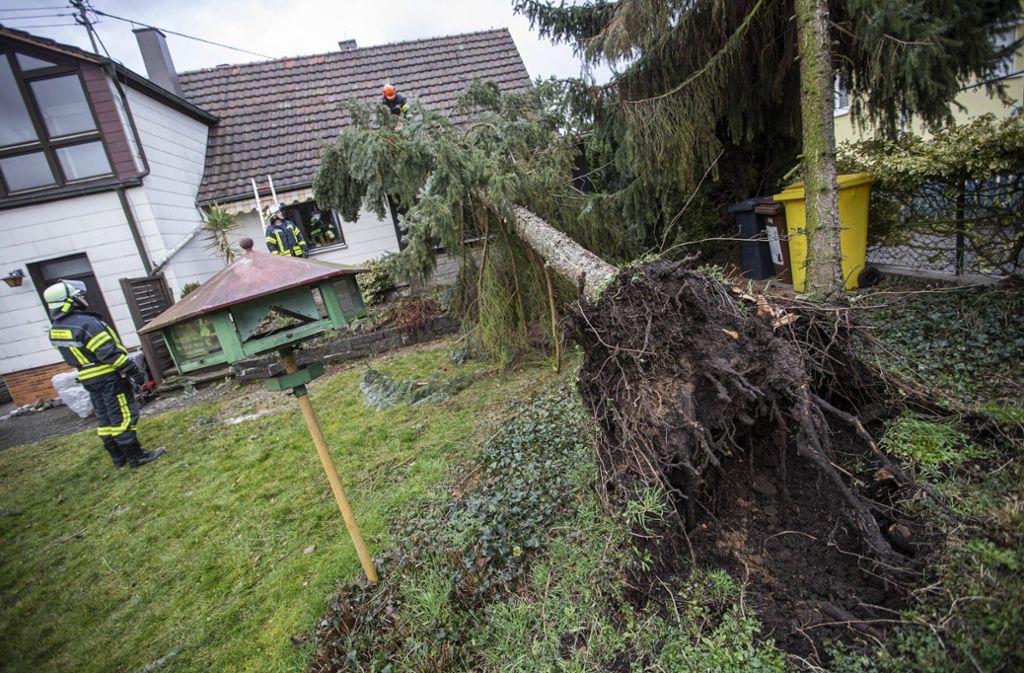 In Winterbach stürzte ein Baum auf ein Haus. Foto: 7aktuell.de/Simon Adomat