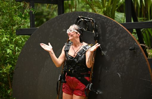 Danni und Elena räumen bei der Dschungelprüfung ab  –  Marco muss gehen
