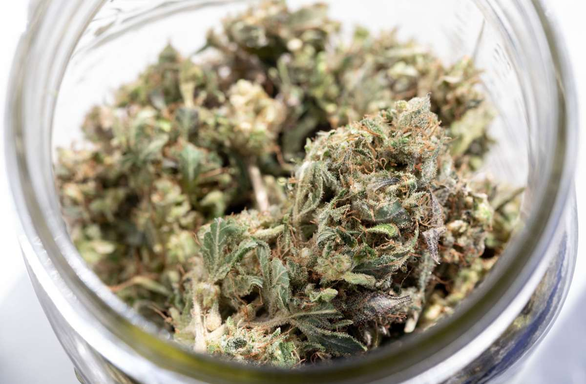 Wegen des Marihuana-Geruchs werden die Beamten stutzig (Symbolbild). Foto: dpa/Allyse Pulliam