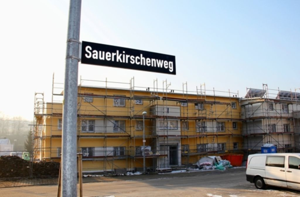 Kommt ein Laden in die Neubauten am Sauerkirschenweg, und wer betreibt ihn? Foto: Chris Lederer