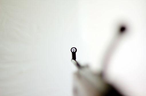 Täter stehlen unter anderem Luftgewehr und Jagdmesser