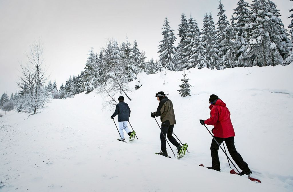 Der Nationalpark  ist auch bei Schnee ein Erholungsgebiet. Noch ist dort  Wintersport  möglich Foto: dpa