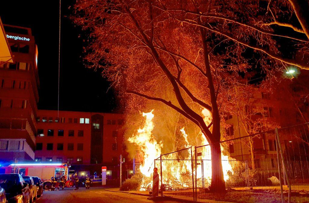 Die trockenen Zweige brannten im Stuttgarter Westen wie Zunder. Foto: Annika Grah