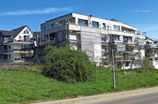Erneut Vorwürfe gegen das Baurechtsamt