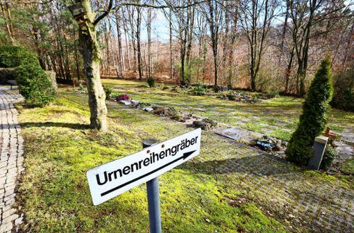 Freigehaltene Fläche für  Waldfriedhof bleibt ein Wald